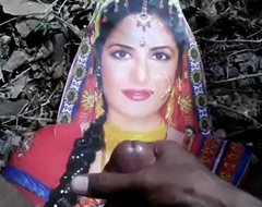 Desi Boy Tribute Nearby Advanced standpoint Katrina Kaif